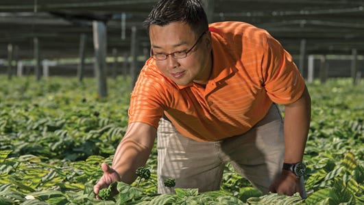 Will Hsu is vice president of operations at Hsu's Ginseng Enterprises in Wausau. He recently was named a Wisconsin Alumni Association Forward under 40 Award winner.