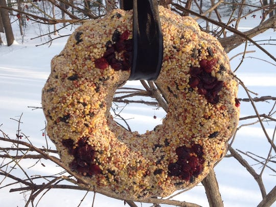A bird seed wreath baked in a bundt pan will make feathered