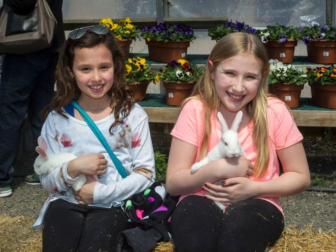Abma's Farm held its annual Chicks and Bunnies event