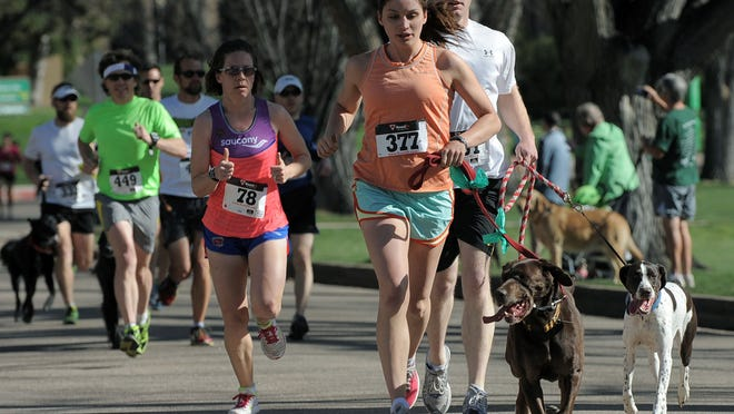 CSU researcher Kelly Ramirez and dog run in a previous Fast and the Furriest 5K at the CSU Oval.