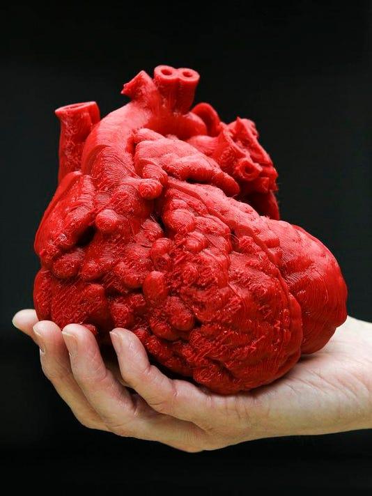 2-3D Heart 02.jpg