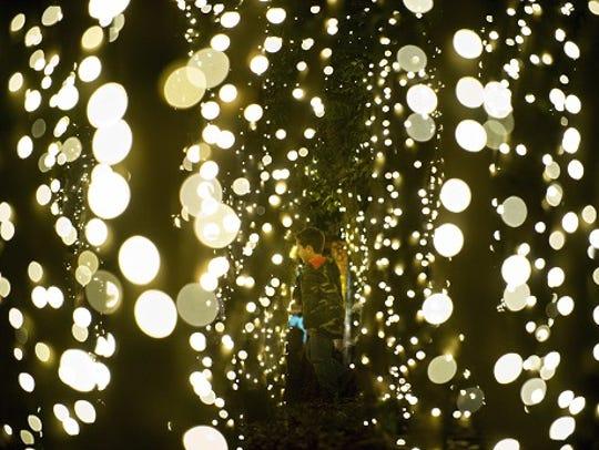 A young reveler runs between trees lit in Krutch Park