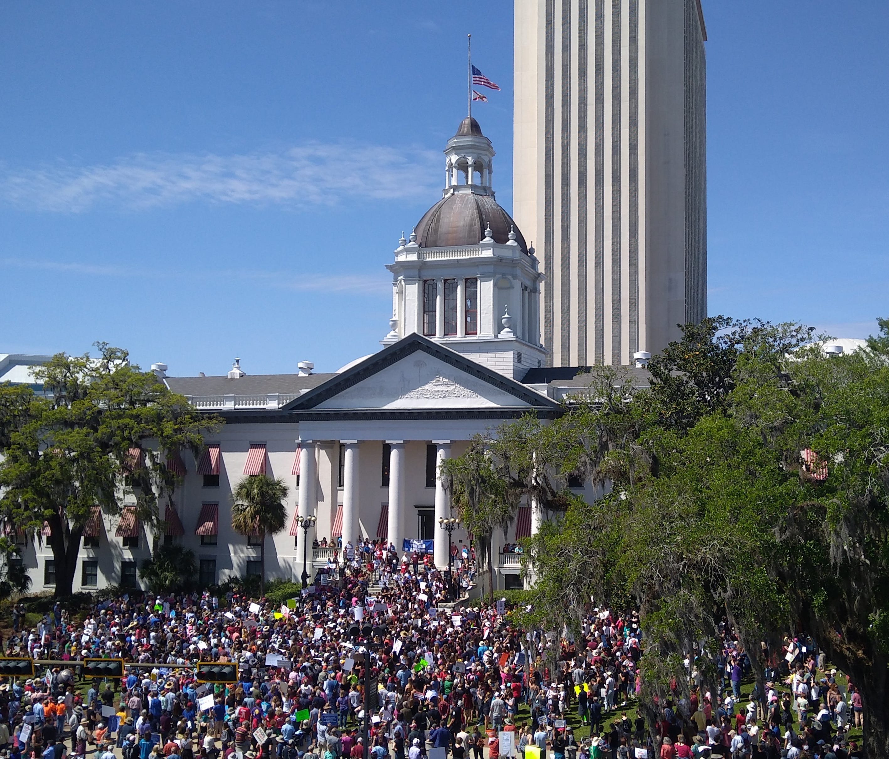 An aerial view of the Florida Capitol during the March for Our Lives rally on Saturday, March 24, where thousands of people showed up to protest stricter gun control laws.