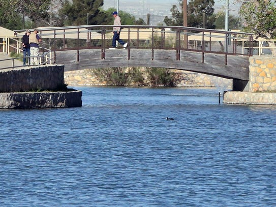 Could ascarate park be making a comeback for El paso fishing