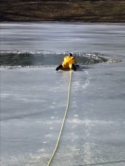A Wayne Township firefighter rescued a dog that fell through thawing ice on a pond near Denison Street and Southern Avenue Tuesday, Jan. 20, 2015.