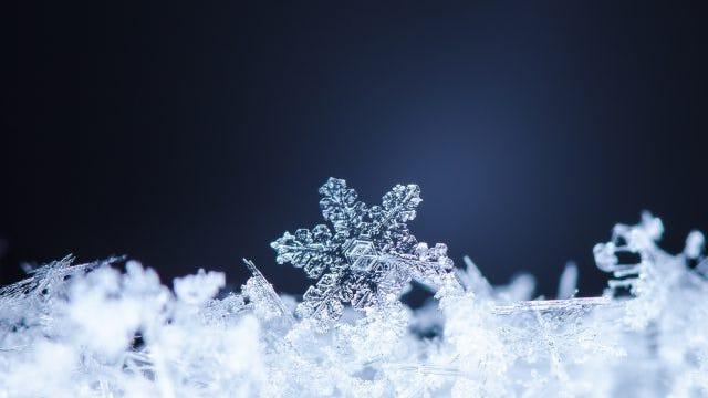 natural snowflakes on snow