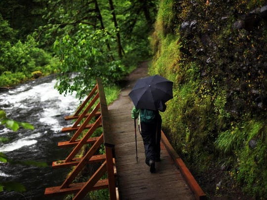 A rainy June day on the Eagle Creek Trail in the Columbia River Gorge, May 10, 2010.