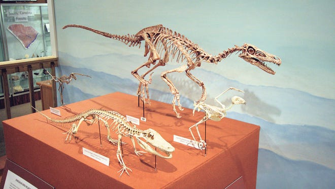 Kids will enjoy a visit to the Bob Campbell Geology Museum.