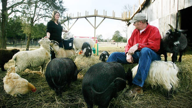 Head to Lucky Ladd Farms in Eagleville Saturday for the Sheep and Wool Festival. The event will feature hands-on activities for kids and live sheep shearing demonstrations.