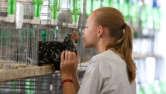 """Jessica Veith of Ringoes, 14, kisses her Ancona chicken, """"Oreo,"""" at the Hunterdon County 4-H and Agricultural Fair at South County Park in Ringoes on Aug. 24, 2017."""