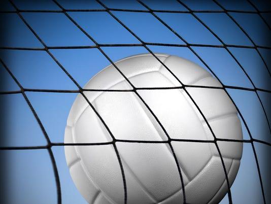 Presto graphic Volleyball