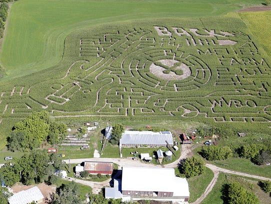 An aerial view of the 2015 Meuer Farm corn maze at