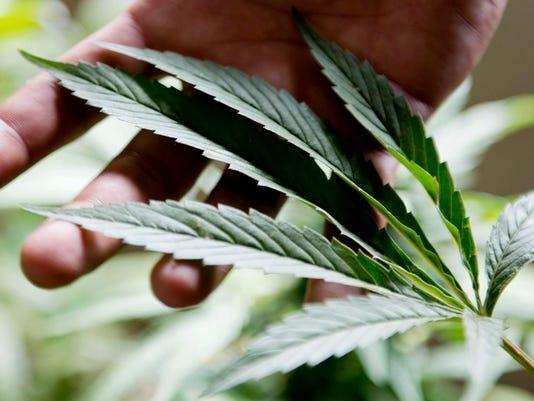 #stock medicalmarijuana.JPG