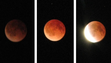 """""""It was incredible watching the lunar eclipse. So worth waking up at 2:30 a.m."""""""