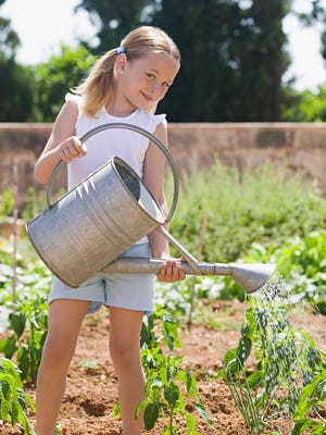 August is the month to use wise watering practices to keep your plants alive during the long, hot days.