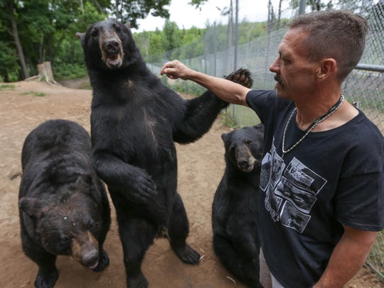Carl Oswald, 44, pets a large black bear at Oswald's