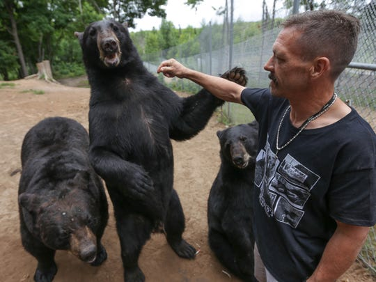 Carl Oswald, 44, pets a large black bear at Oswald's