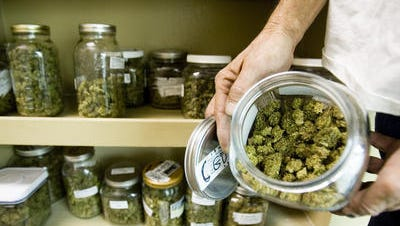 California voters will decide whether to legalize recreational marijuana after Secretary of State Alex Padilla said Tuesday, June 28, 2016.