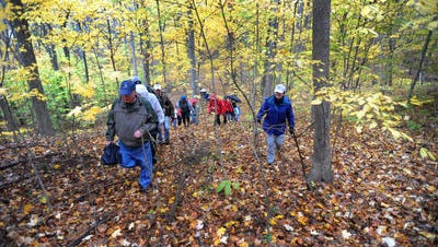 Eagle Creek hikers set off on a moderately paced five-mile hike.