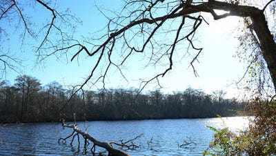 This Dec. 22, 2016 photo shows a view of the Pocomoke River that is a popular trail for kayakers. On Monday, June 27, kayakers along the trail discovered a body about 10:30 a.m. The incident is under investigation by the Worcester County Sheriff's Office.