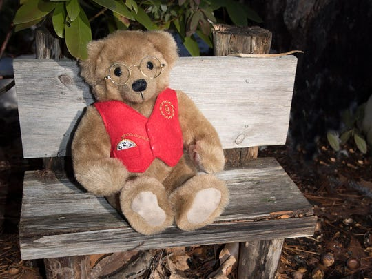 Mr. Biddle the Bear sits on a bench in the forest.