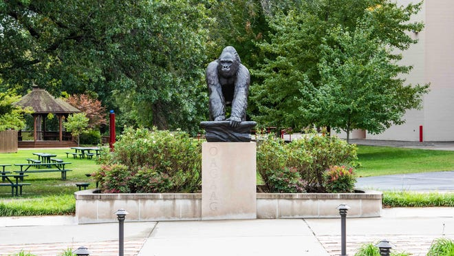 The iconic gorilla mascot of Pittsburg State University in southeast Kansas is alone on campus this summer, but board of regents plans to keep extended education affordable are in the works at the under-graduate and graduate state university.