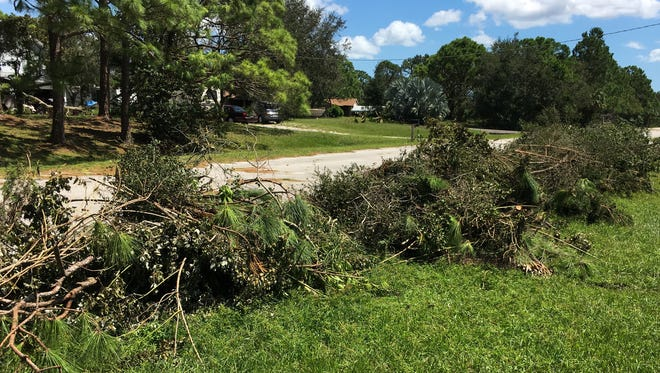 Vegetation and other storm debris from Hurricane Irma are starting to fill curbsides throughout Brevard County.