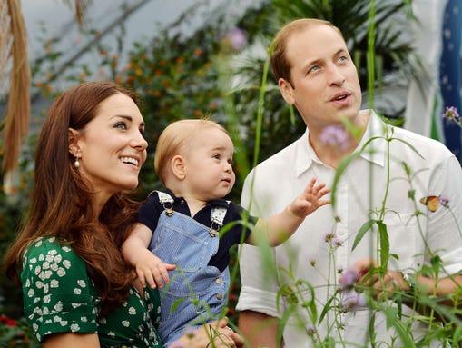 George watches butterflies