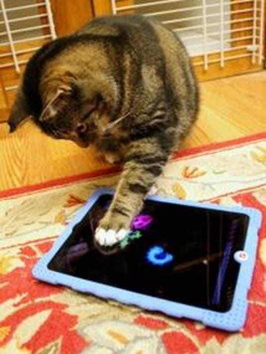 Cat Playing Video Games 1
