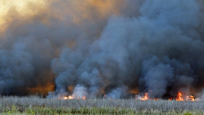 Florida Forest Services conducting a controlled burn west of 1-95 of approximately 1,700 acres near the west end off Eau Gallie Blvd. The huge pillars of smoke drew numerous spectators.
