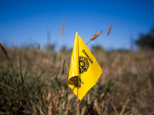 Warning flags line the farmland affected by the Plantation Pipe Line spill in December 2014 near Belton.