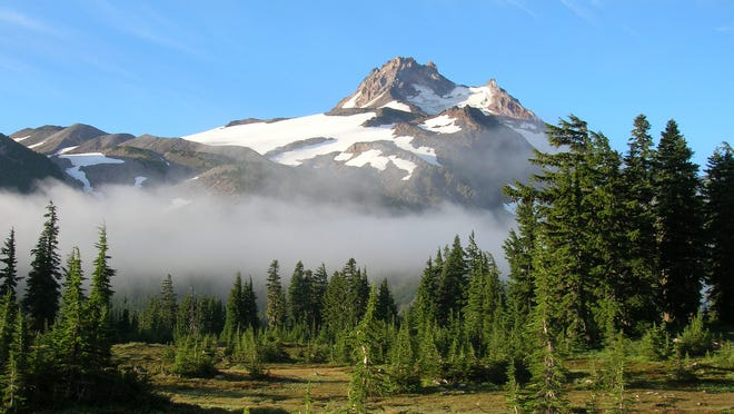 Tree invasion on glacial landforms, Mount Jefferson in the background