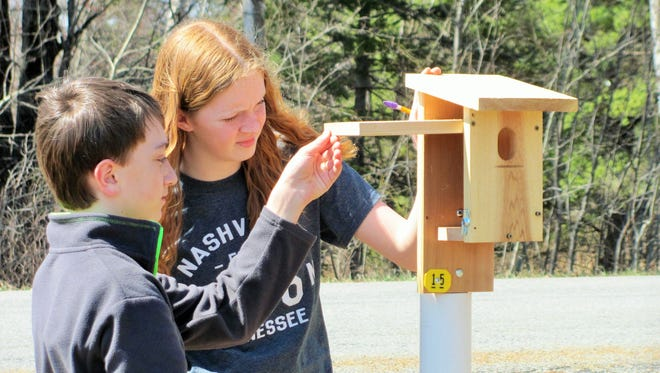 D.C. Everest GEM students built 15 nesting boxes that have been placed in an ideal bluebird habitat in Kronenwetter.