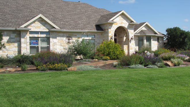 A drought-tolerant lawn can look lush and green, even in San Angelo.