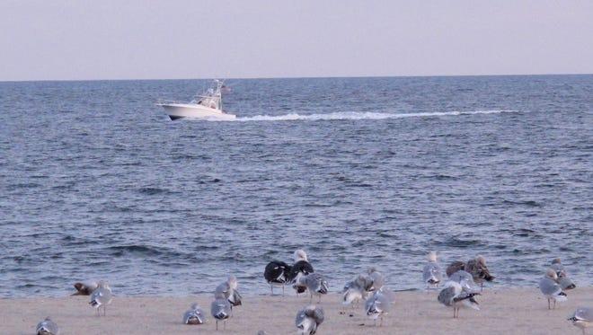 A boat sails past Risden's Beach in Point Pleasant Beach.