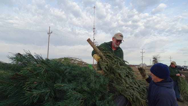Dick Cooper loads a pickup with Christmas trees donated by Lowe's that will be used to create fish habitat in the lake along Marion Tallgrass Trail.