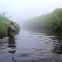 Len Harris wading the river during a foggy morning