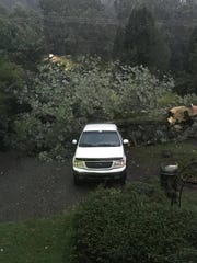 A tree fell on the property of Images Salon on Main
