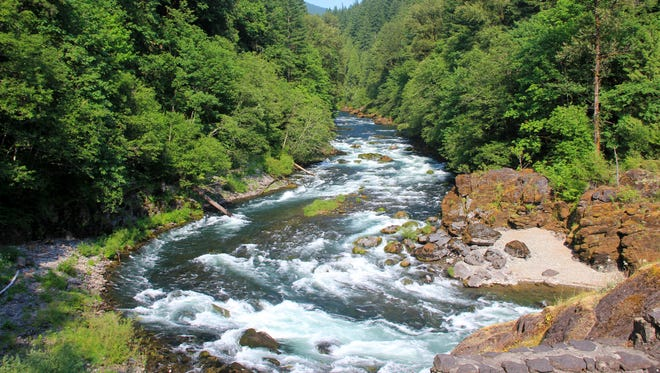 Viewpoint of the North Santiam River from Niagara County Park.