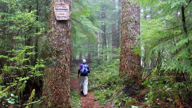 The author hikes into the Drift Creek Wilderness.