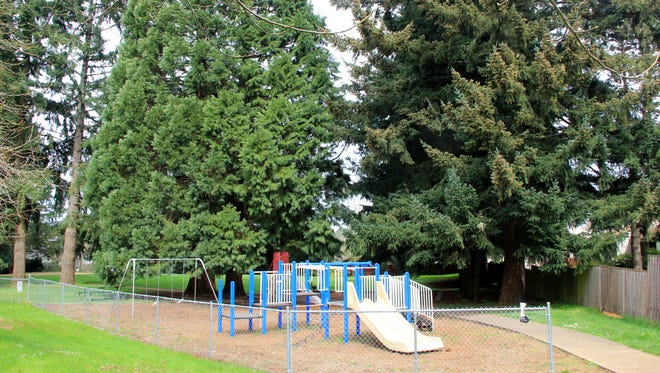 Rees Park in South Salem has playground equipment.