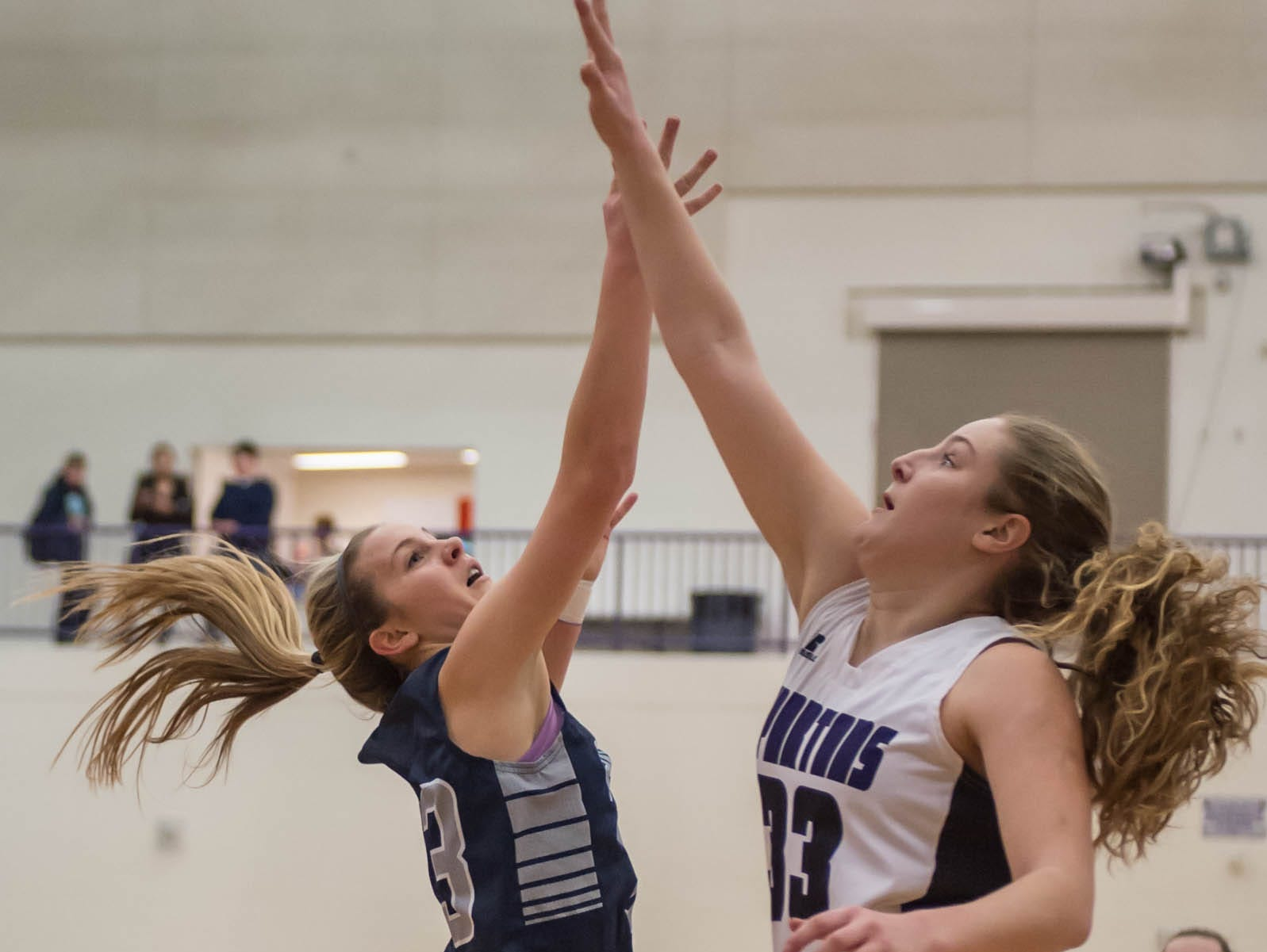 Lakeview's Jessalynn Genier goes for the rebound against Gull Lake in Friday evening's game.