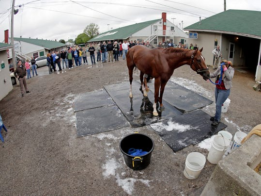 Kentucky Derby hopeful Chitu gets a bath after a morning workout at Churchill Downs Wednesday, April 30, 2014, in Louisville, Ky. (AP Photo/Charlie Riedel)