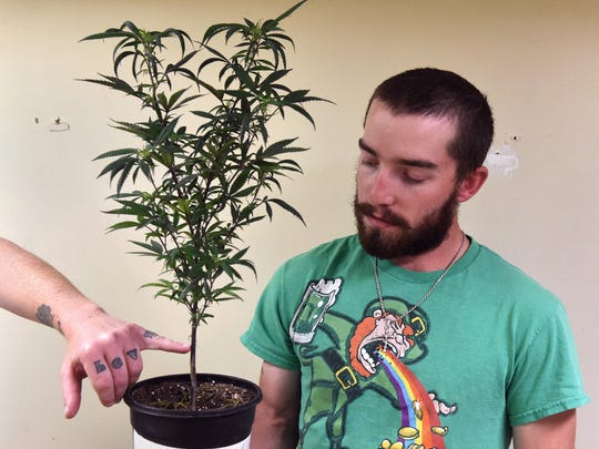 Marcus Conner holds a marijuana plant as roommate Steve Eaves points out a features that distinguishes a male from a female plant in there home in Elko, Nevada on May 20, 2017. Eaves and Conner are both recreational marijuana users.