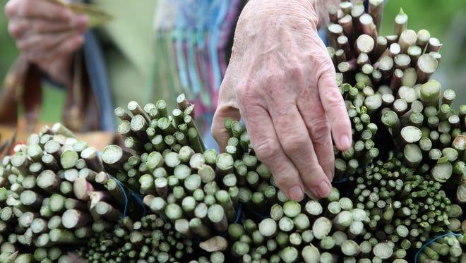 Asparagus from McConnell Farms.