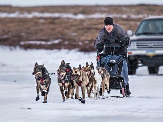636549850204091996-sled-dogs.JPG