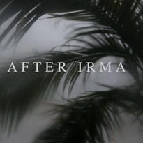 Video: After Irma