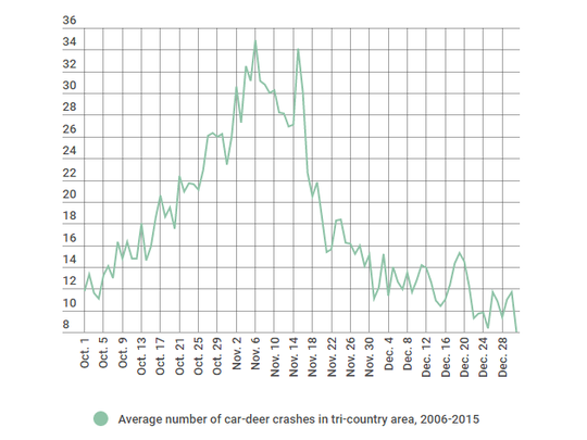 Car-deer crashes drop as soon as the firearm hunting season begins.