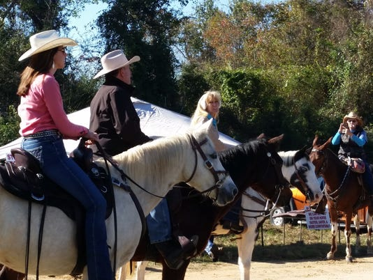 bogue-chitto-horses.jpg
