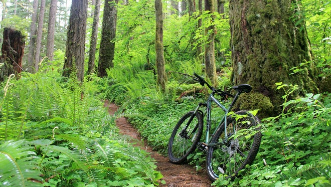 A proposed bill would allow mountain bikes on wilderness trails.